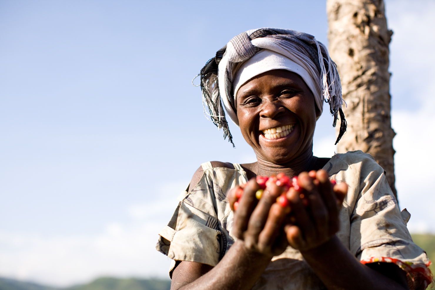 women coffee farmers production international trade centre female africa south america sprudge